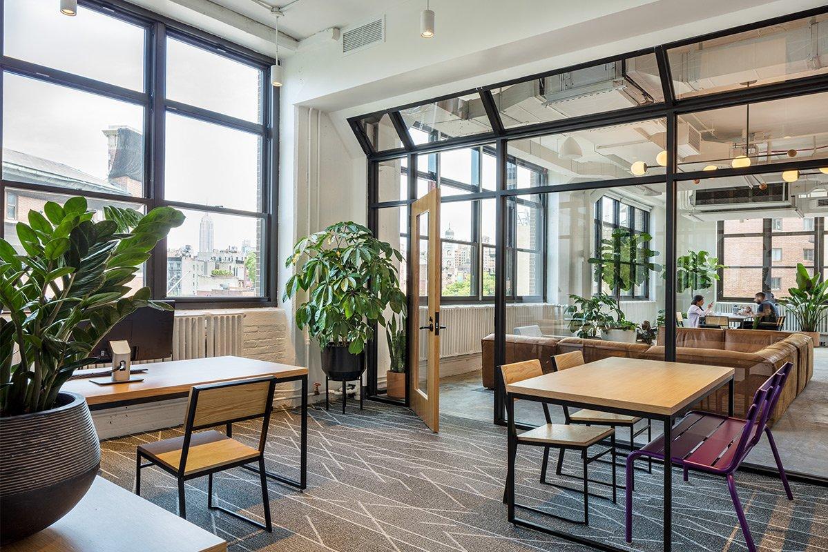 Shake Shack HQ - Greenery NYC | A Biophilic Design Company